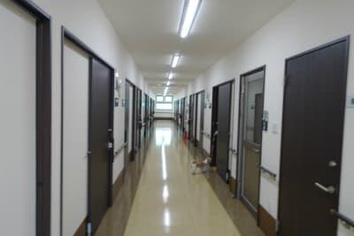 れんげハイツ井高野の施設画像