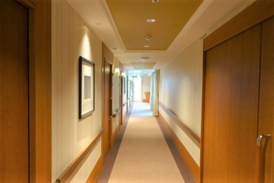 館内共用廊下です。ホテルのような高級感があります。