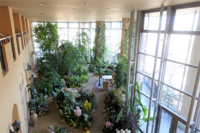 ちあーずガーデン(温室)では、緑だけでなく噴水や小川に囲まれながらのティータイムをお楽しみいただけます。
