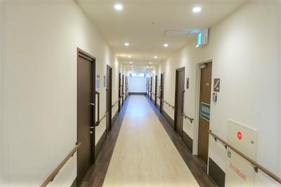 共用廊下になります。左右にお部屋が並んでいます。